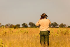 Safari Guide checks conditions before traveling forward Stock Photo