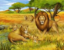 The safari - illustration for the children Stock Photo