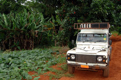 Safari jeep on dirt road. A safari jeep on a dirt road in a tropical location Stock Images