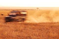 Safari Jeep Driving stock foto's