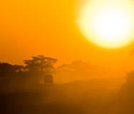 Safari jeep driving through savannah. In the sunset stock photos