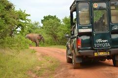 Safari Jeep Yala Sri Lanka royalty-vrije stock afbeeldingen