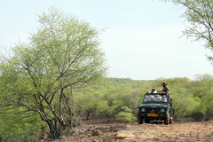 Safari jeep in zone 4 of Ranthambore park. RANTHAMBORE, INDIA-JUNE 24: People eagerly waiting for tiger sighting in Safari jeep during game drive in Ranthambore royalty free stock photography