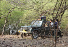 Safari jeep in zone 4 of Ranthambore park. RANTHAMBORE, INDIA-JUNE 24: People eagerly waiting for tiger sighting in Safari jeep during game drive in Ranthambore stock photos