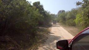 Safari Jeeps Drive auf rauem Schotterweg 2 stock video footage