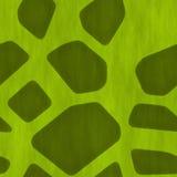 Safari Jungle Themed Seamless Background. A Safari Jungle Themed Seamless Background Abstract Stock Photography