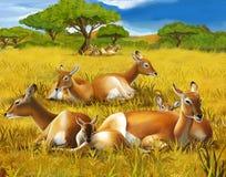 Safari - koba lychee - kolorystyki strona - ilustracja dla dzieci ilustracja wektor