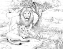 Safari - leeuwen royalty-vrije illustratie