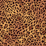 Safari leopard fur seamless vector print Royalty Free Stock Image