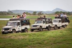 Safari. Many off-road jeeps with visitors. Minneriya. Sri Lanka. Royalty Free Stock Image