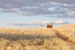 Safari in Namibia Royalty Free Stock Image