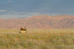 Safari in Namibia Royalty Free Stock Photos