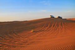 Safari nei UAE fotografia stock libera da diritti