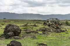Safari in Nogorongoro Crater Stock Images