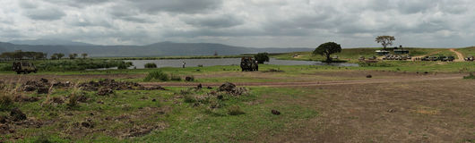 Safari in Nogorongoro Crater Stock Photos