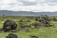 Safari in Nogorongoro-Krater stock afbeeldingen