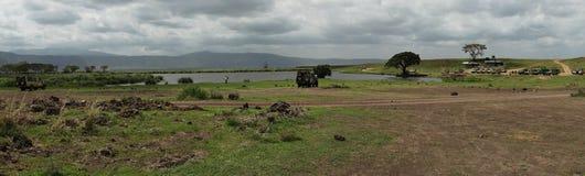 Safari in Nogorongoro-Krater stock foto's