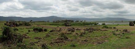 Safari in Nogorongoro-Krater royalty-vrije stock afbeelding