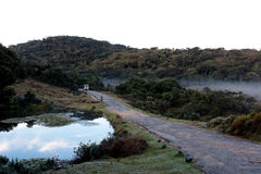 Safari och Horton Plains National Park i morgonen Royaltyfri Foto