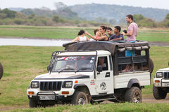 Safari. Off-road jeep with family visitors. Minneriya. Sri Lanka. Royalty Free Stock Photography
