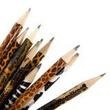 Safari pencils Royalty Free Stock Image