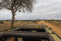 On a Safari. Photo taken from the roof of the jeep that we used to go through Tsavo East National Park, Kenya Stock Images