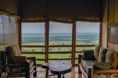 Safari Plains Royalty Free Stock Photography