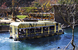 Safari ride in Everland, South Korea. Autumn season in south korea, most leaf and plant started to fall and withers. This place situated in Everland, South Korea stock photos