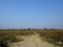 Safari Road Stock Photo