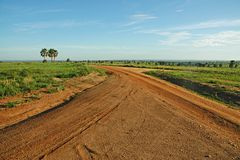Safari Roads Join in Uganda Africa Stock Photos