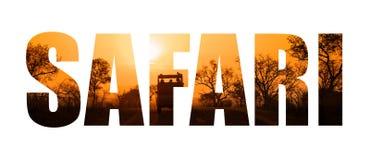Safari słowa zmierzchu sylwetka Zdjęcia Stock