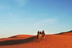 Safari in Sahara Stock Photos