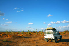 Safari in Sahara Desert. Africa stock photo