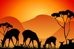 Safari. Silhouettes of wild animals as background Stock Photos
