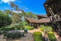 Safari stróżówka w masai Mara Kenya zdjęcia royalty free