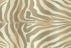 Safari ZEBRA Print Royalty Free Stock Photography