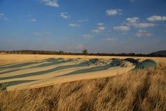 Safari Tanzania del globo Imagenes de archivo