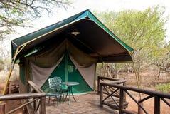 Safari Tent fotografia de stock royalty free
