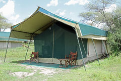 Safari Tent Stockbild