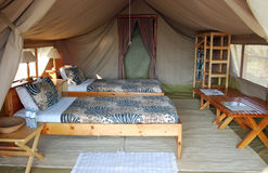 Safari tent housing a luxury hotel room. With single beds and sheet with safari print, tables, wardrobe - Ngamba Island - Uganda - Africa stock image