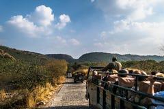 Safari Tourism på den Ranthambore nationalparken, Rajasthan, Indien Arkivfoton