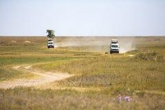 Safari turyści na gry przejażdżce w Serengeti Obrazy Stock