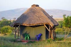 Safari vacation Stock Images