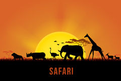 Safari. Vector illustration of Africa landscape with wildlife and sunset background. Safari theme Royalty Free Stock Photos