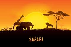 Safari Vector illustration of Africa. Vector illustration of Africa landscape with wildlife and sunset background. Safari theme Stock Images