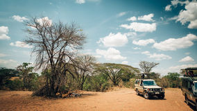 On Safari Royalty Free Stock Photos