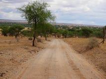 Safari w Afryka Tarangiri-Ngorongoro Fotografia Stock