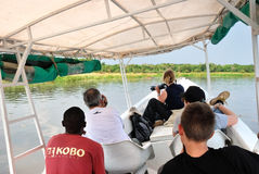 Safari on the White Nile River in Uganda. UGANDA - AUG 27, 2010: Tourists have a morning  trip to watch the african wildlife on the White Nile River in Uganda Stock Photography