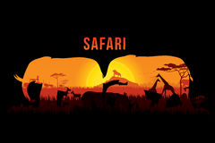 Safari and wildlife. Vector illustration of Africa landscape with wildlife and sunset background. Safari theme Royalty Free Stock Image