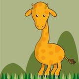 Safari Royalty Free Stock Images